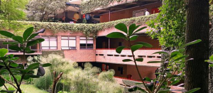 F M University Guatemala