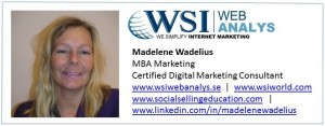 Madelene Wadelius WSI WebAnalys
