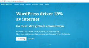WordPress hemsida domänstrategi bild